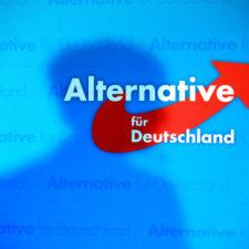 marx21-Debatte: Hat die AfD einen neofaschistischen Flügel?