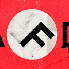 AfD gibt grünes Licht für Nazis