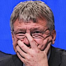 Nazis im Ländle: Wer ist die AfD in Baden-Württemberg?